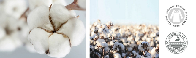 ethical-and-organic-cotton-fabric