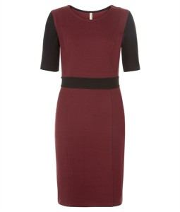 The People Tree Fitted Langley Dress £85.00